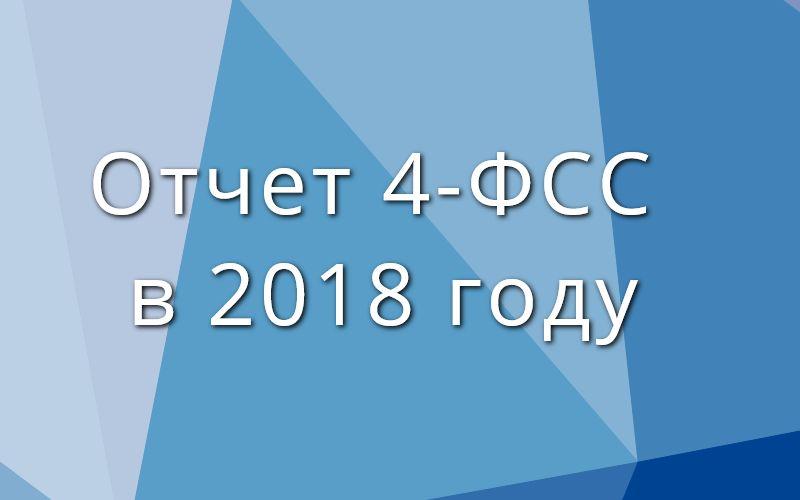 Отчет 4-ФСС в 2018 году