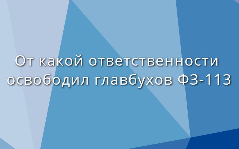 От какой ответственности освободил главных бухгалтеров ФЗ-113 от 29.05.2019 г.?